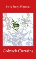 Cobweb Curtains ebook cover
